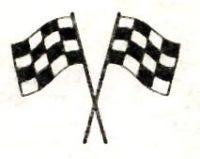 Checkered Flags.jpg
